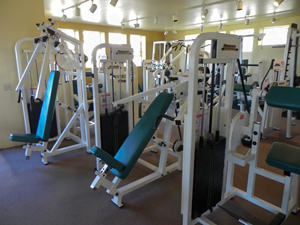 State of the Art Fitness Equipment